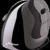 Evoluent VerticalMouse D Medium Wireless